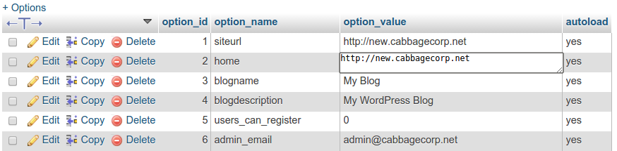RE: How to copy my WordPress site into a sub-domain?